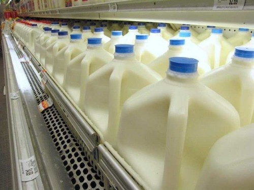 Milk Is Far From Nature's Perfect Food