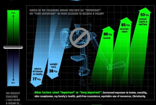 11 Reasons Infographics Are Poison And Should Never Be Used On The Internet Again
