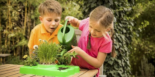 The best gardening kits for kids you can buy