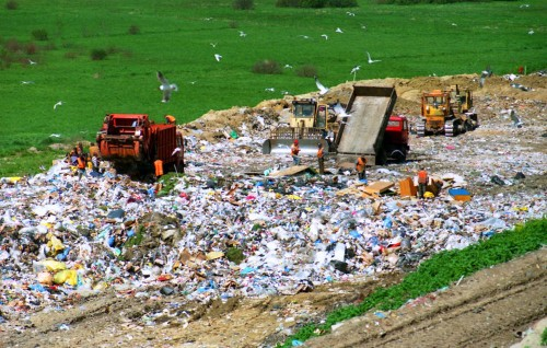 Meet the two 'Uber for trash' startups that are trying to make waste less wasteful