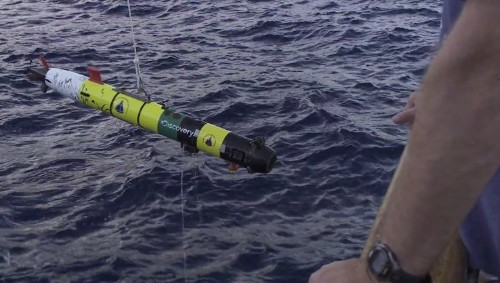 Researchers Made A Shark-Stalking Robot — Then The Sharks Turned On It
