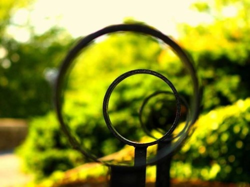 Why Successful People Define Their 'Circle Of Competence'