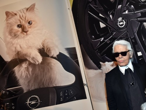 Karl Lagerfeld famously pampered his cat. Here's what Choupette's lavish life is really like.
