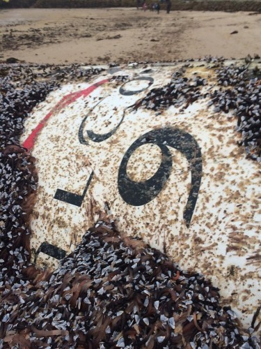 A piece of a SpaceX rocket just washed ashore after spending over a year at sea, and the pictures are incredible