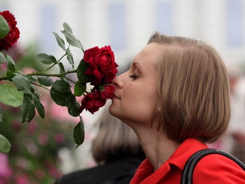 Scientists just solved a long-standing mystery about sense of smell