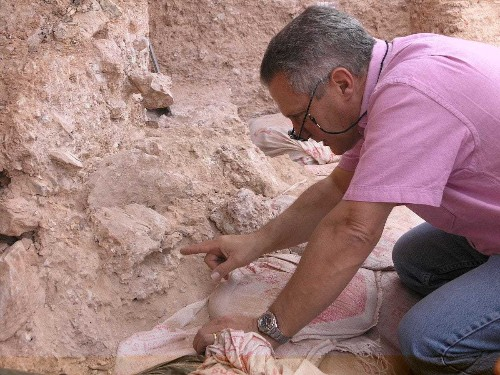 Discovery of 300,000-year-old skulls challenges human origin story - Business Insider