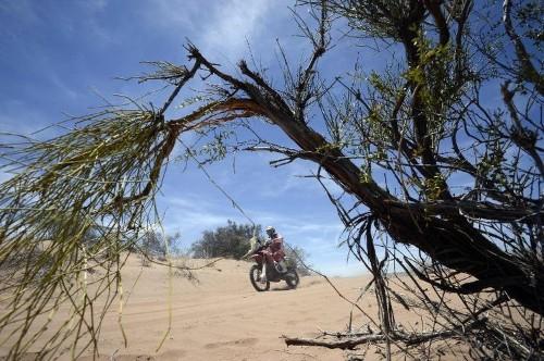 Rodrigues takes stage win, Barreda keeps Dakar lead