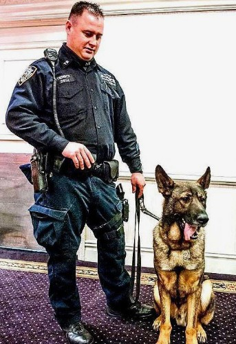 Injured Police Dog Holds Down Attacker During Subway Brawl