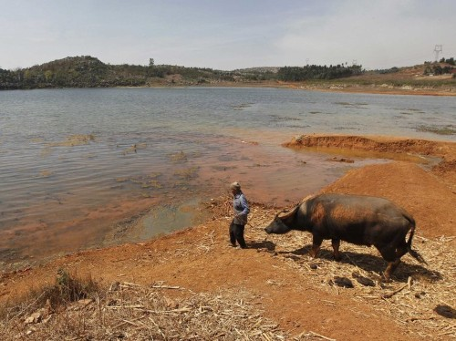 Leaked Report Predicts More Food Shortages From Climate Change