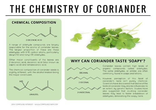 These Beautiful Graphics Reveal The Chemistry Of Everyday Foods