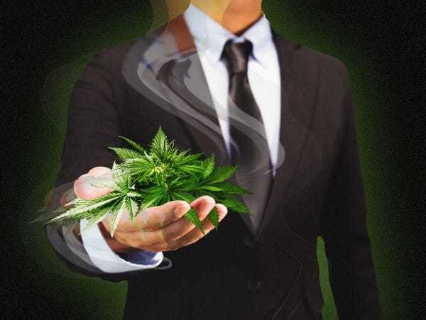 The top 14 venture-capital firms in the cannabis industry - Business Insider