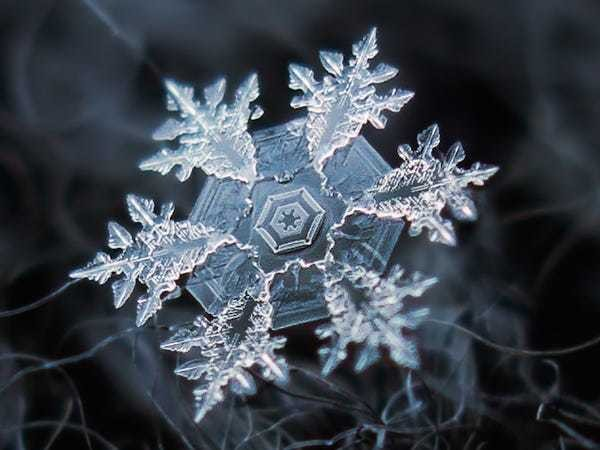 29 incredible close-ups of snowflakes shot with a homemade camera rig - Business Insider