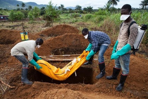 World steps up Ebola action as infections soar