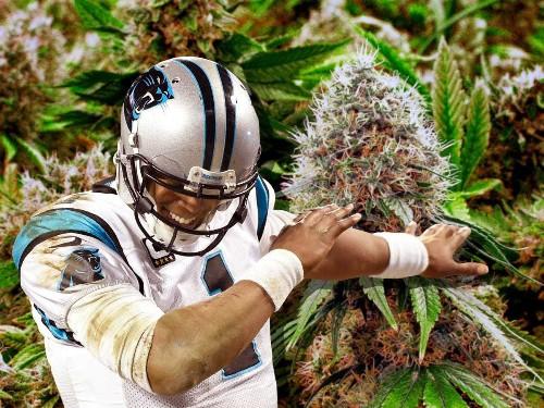 What is marijuana dabbing?