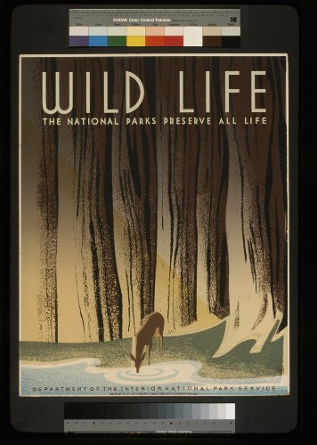 9 vintage National Park Service posters that will inspire you to get outside