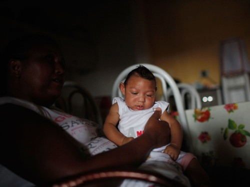 7 questions about the Zika virus that science needs to answer