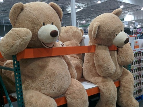 8 comically large items you can buy at Costco