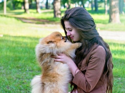 A new study shows dogs will comfort their humans when they're sad — and if they don't, it's because they're too upset and stressed to help