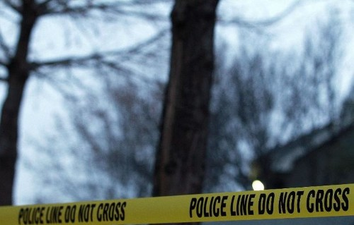 Two-year-old shoots, kills mother in US