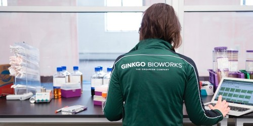Ginkgo Bioworks plans to accelerate its biotech efforts after securing a $4 billion valuation
