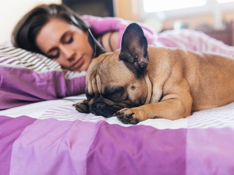 Sleep & Sleep Disorders - cover