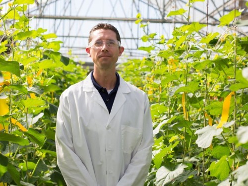 A new Monsanto-backed company is on the verge of producing the first fruit made with a blockbuster gene-editing tool that could revolutionize agriculture