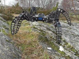 This tarantula-inspired robot was built by one man in his garage - Business Insider