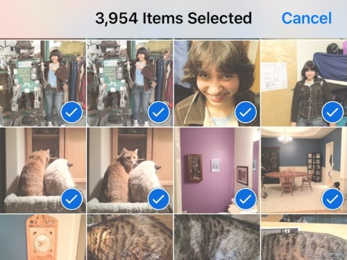 How you can easily delete all the photos on your iPhone at once