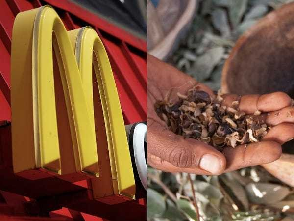 McDonald's is teaming up with Ford to recycle coffee residue into car parts - Business Insider