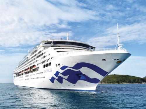 Princess Cruises passenger dies after falling overboard