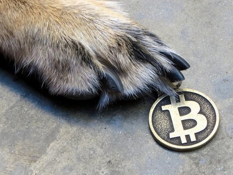 Online Payments Firm Stripe Now Supports Bitcoin