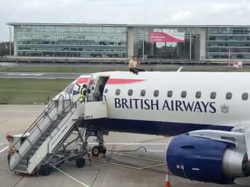 Climate protestor lays down on airplane at London City Airport - Business Insider