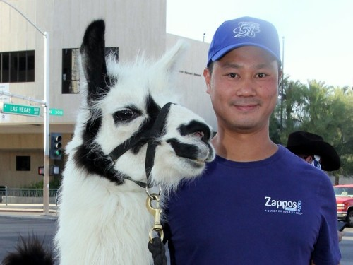 Zappos' multimillionaire CEO explains why he lives in a trailer park with his two pet llamas