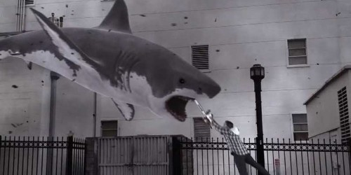 The 'Sharknado' Trailer Is The Most Ridiculous Thing We've Ever Seen