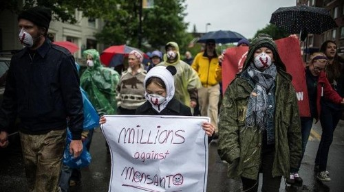 Protestors All Over The World March Against Monsanto