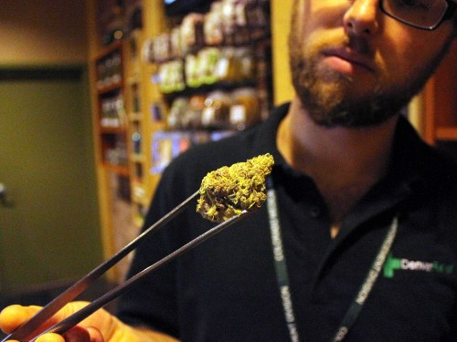 LEGALIZED POT: Our Exclusive Look Inside America's Emerging Marijuana Industry