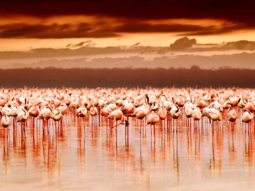 40 stunning natural wonders everyone should see in their lifetime - Business Insider