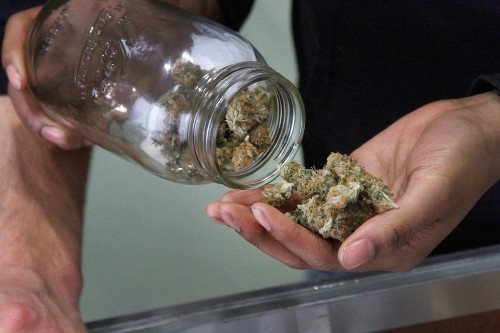 Cannabis producer Cronos sinks after revenue comes up short (CRON)