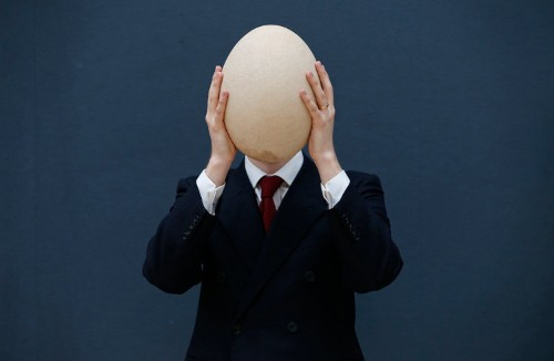 This Is The Best Picture Of A $45,000 Egg You Will Ever See