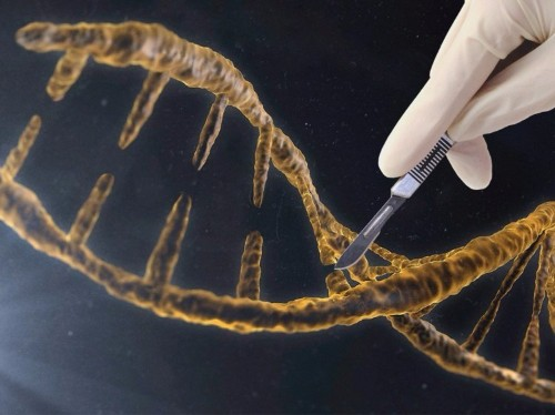 A controversial tool that lets scientists rewrite DNA just achieved a major milestone