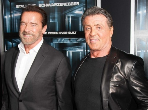 Sylvester Stallone And Arnold Schwarzenegger Hated Each Other In The '80s