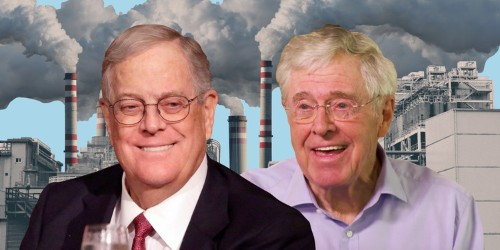 What is the Koch brothers' net worth? See how they spend their wealth