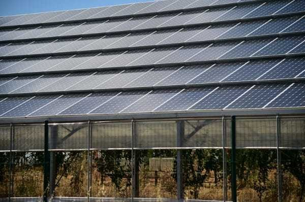 Mafia and multinationals milk Italy's green energy boom - Business Insider