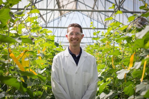 Inside the little-known Monsanto campus where scientists are changing the way you eat