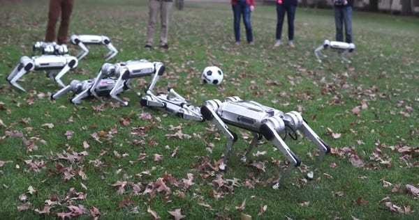 MIT Mini Cheetah robots backflip, play with soccer ball in new video - Business Insider
