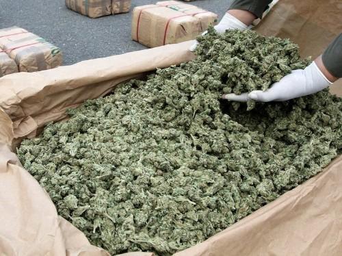 Feds Crack Down On Hundreds Of Medical Marijuana Shops In California