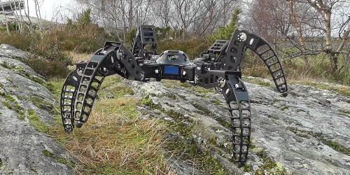 This tarantula-inspired robot was built by one man in his garage