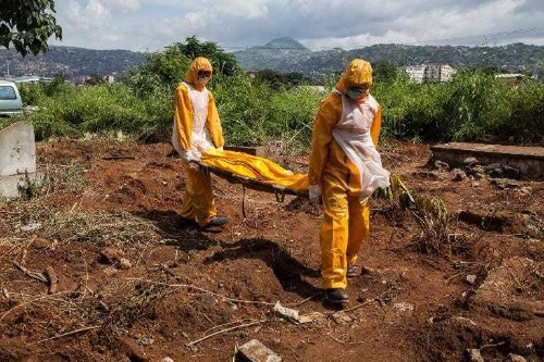 Ebola death toll hits 4,033: WHO - Business Insider