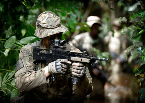 China wants Brazil to teach them jungle warfare
