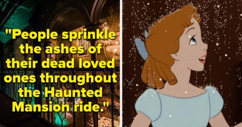 15 Disney Park Employees Shared Their Most Surprising Work Secrets, And I'm Captivated